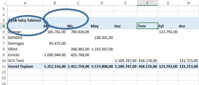 Excel Özet Tablolar-Ömer BAĞCI